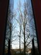 blick durch das carillon